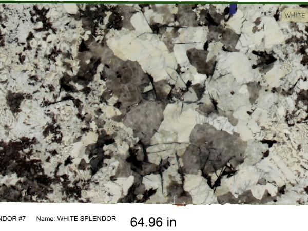 WHITE SPLENDOR #7